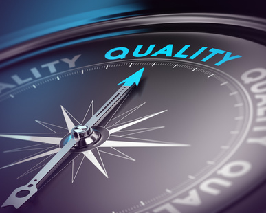 Data Quality Services and Master Data Services