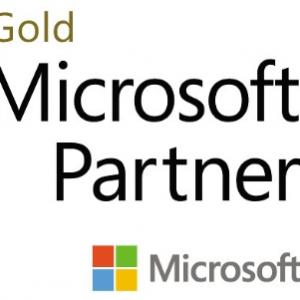 Microsoft Gold Partner Bismart